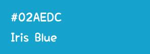 Weblue コーポレートカラー#02AEDC